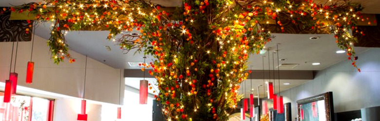 yang sing tree inside restaurant